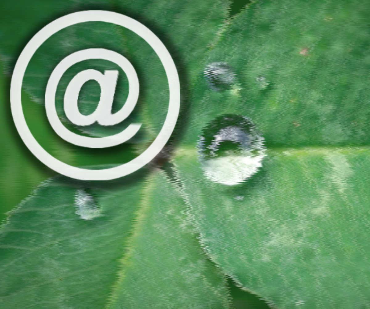 Buzón electrónico facilita tu email